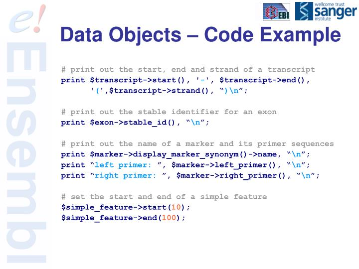 Data Objects – Code Example