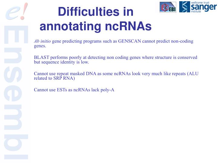 Difficulties in annotating ncRNAs