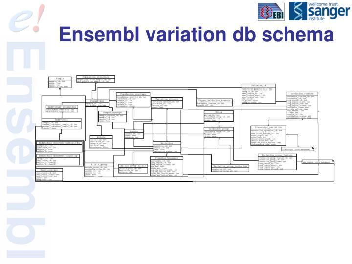 Ensembl variation db schema