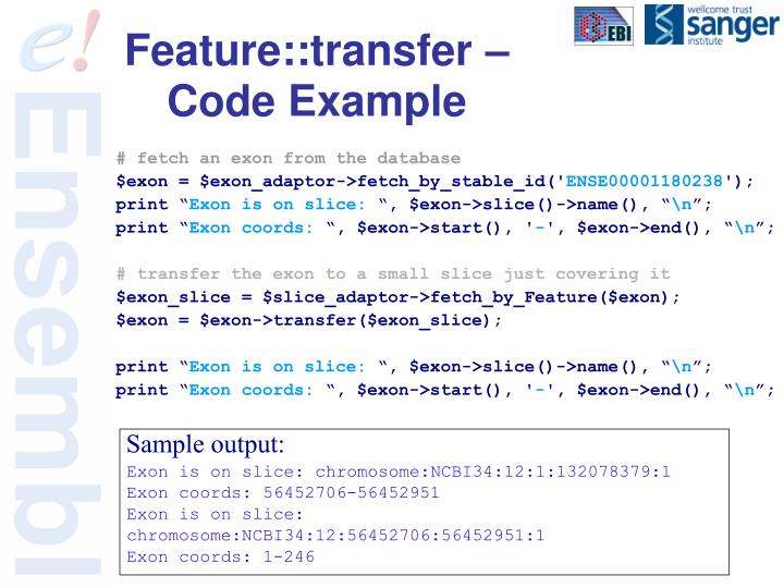 Feature::transfer – Code Example