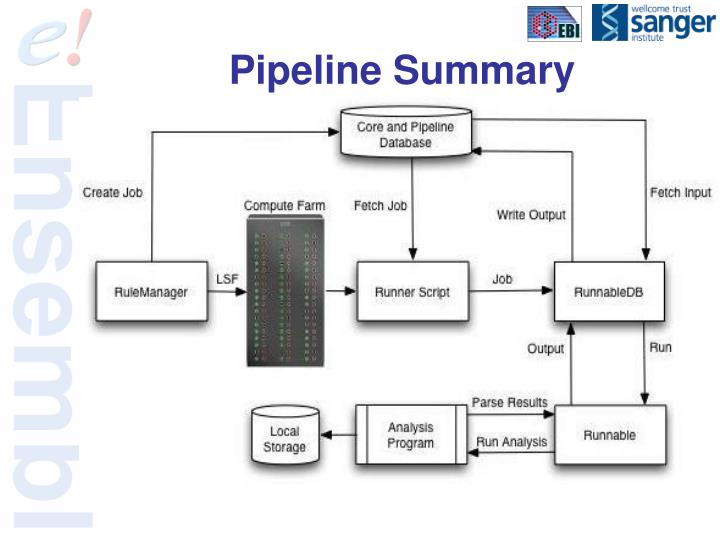 Pipeline Summary