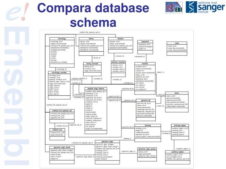 Compara database schema