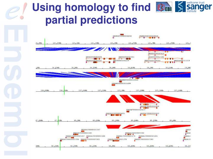 Using homology to find partial predictions