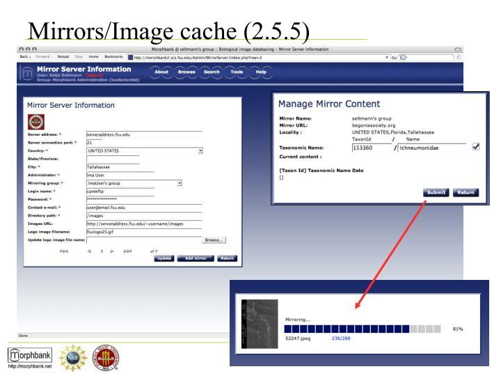 Mirrors/Image cache (2.5.5)