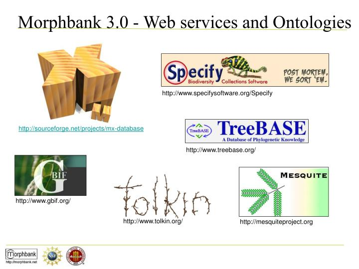 Morphbank 3.0 - Web services and Ontologies