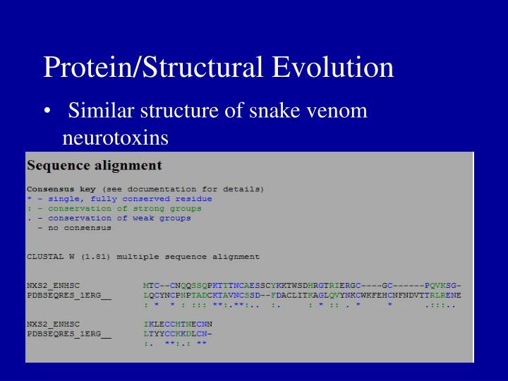 Protein/Structural Evolution