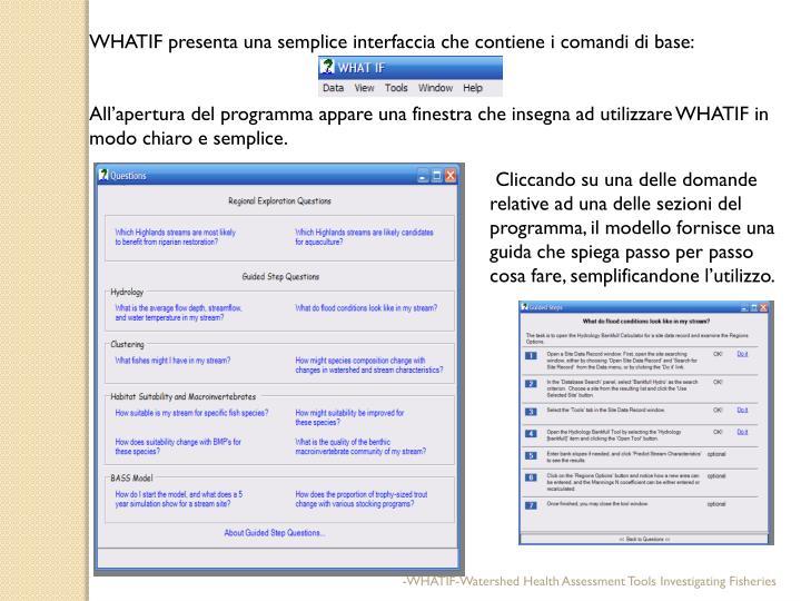 WHATIF presenta una semplice interfaccia che contiene i comandi di base: