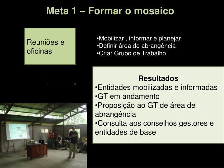 Meta 1 – Formar o mosaico
