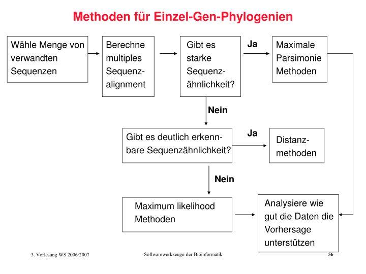 Methoden für Einzel-Gen-Phylogenien
