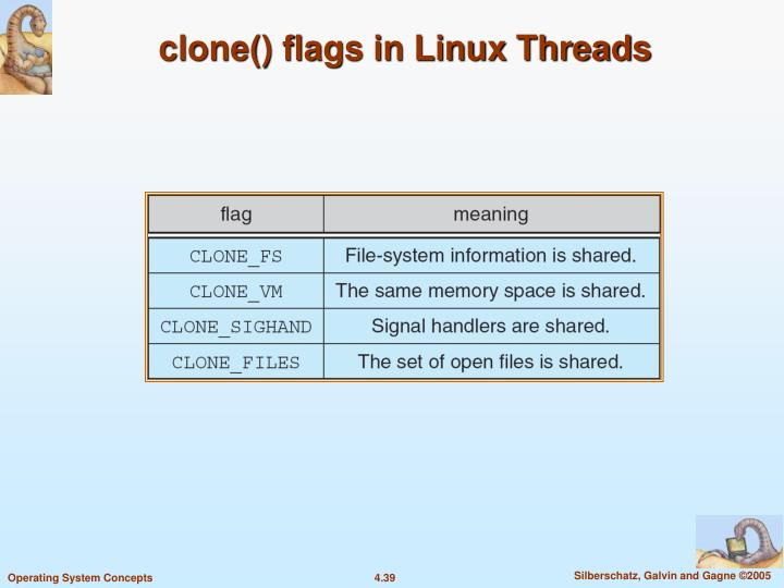 clone() flags in Linux Threads