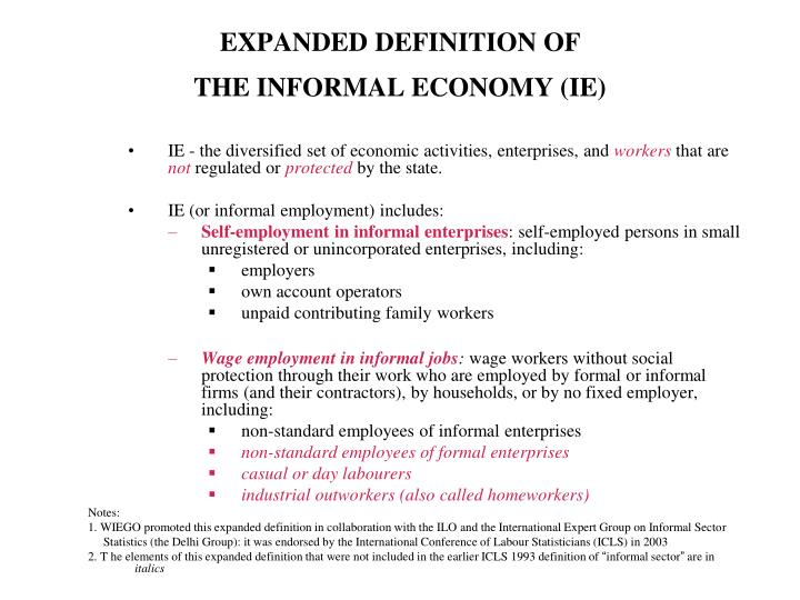 Expanded definition of the informal economy ie