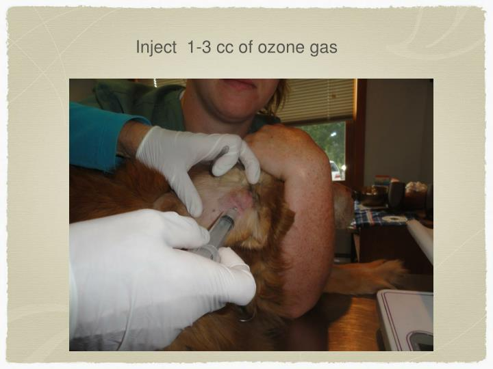 Inject  1-3 cc of ozone gas
