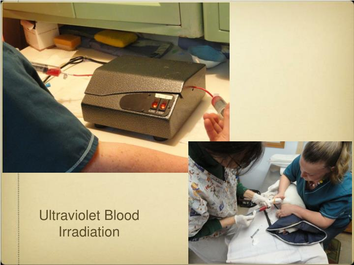 Ultraviolet Blood Irradiation