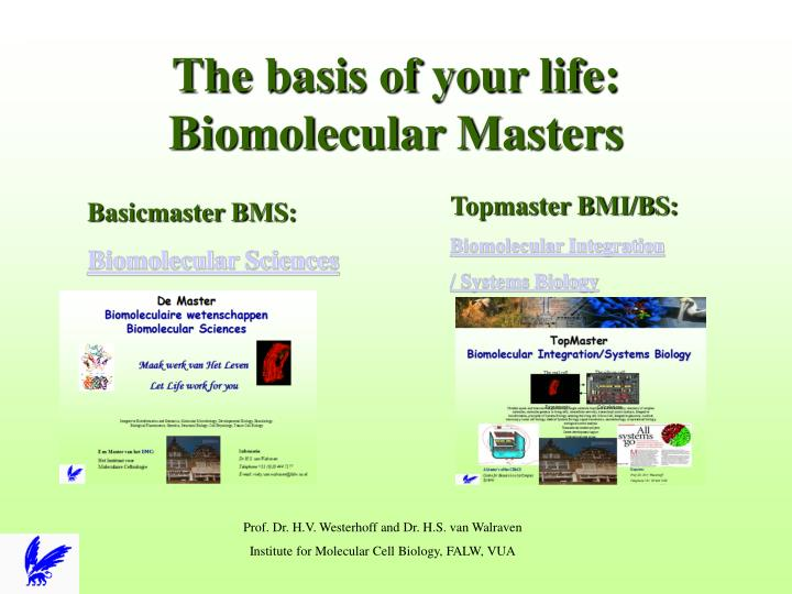 the basis of your life biomolecular masters