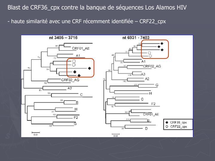 Blast de CRF36_cpx contre la banque de séquences Los Alamos HIV