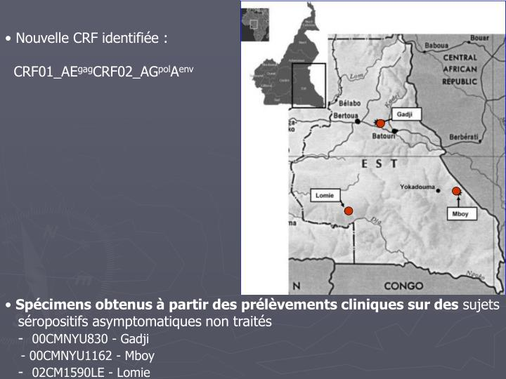 Nouvelle CRF identifiée :