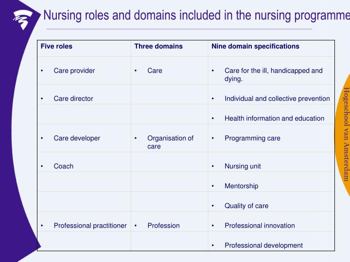 Nursing roles and domains included in the nursing programme
