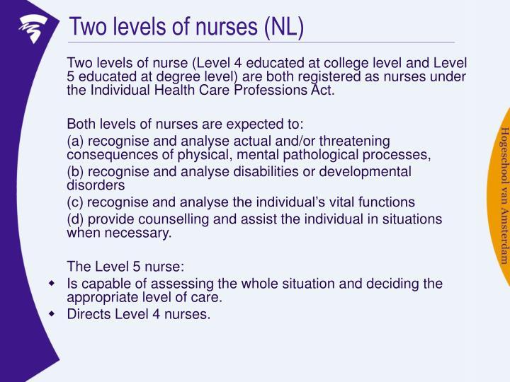 Two levels of nurses (NL)