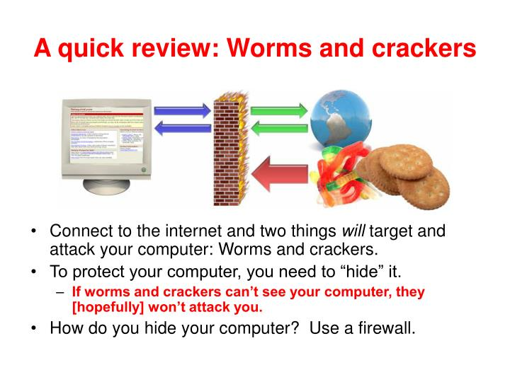 A quick review worms and crackers