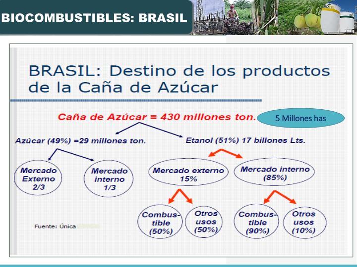 BIOCOMBUSTIBLES: BRASIL