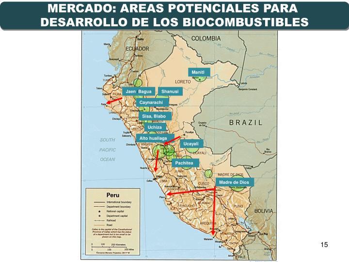 MERCADO: AREAS POTENCIALES PARA