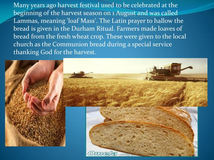 Many years ago harvest festival used to be celebrated at the beginning of the harvest season on 1 August and was called Lammas, meaning 'loaf Mass'. The Latin prayer to hallow the bread is given in the Durham Ritual. Farmers made loaves of bread from the fresh wheat crop. These were given to the local church as the Communion bread during a special service thanking God for the harvest.