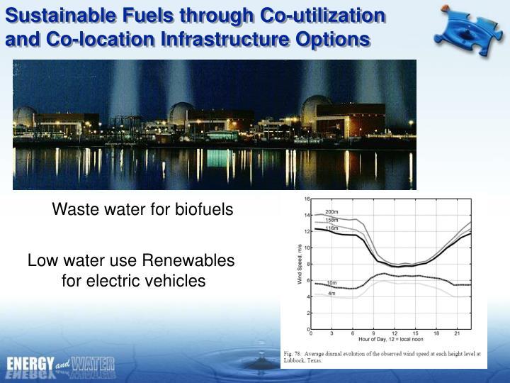 Sustainable Fuels through Co-utilization