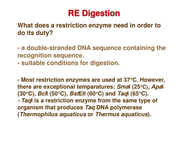 RE Digestion