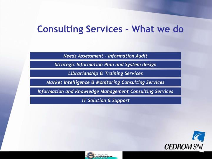 Consulting Services – What we do