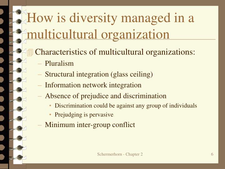 How is diversity managed in a multicultural organization