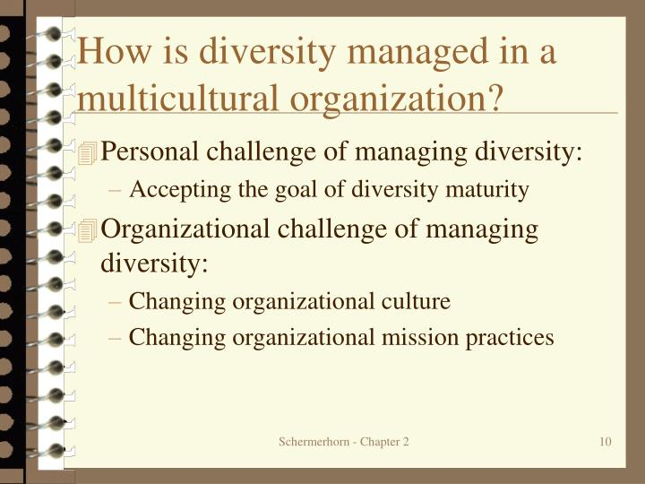 How is diversity managed in a multicultural organization?