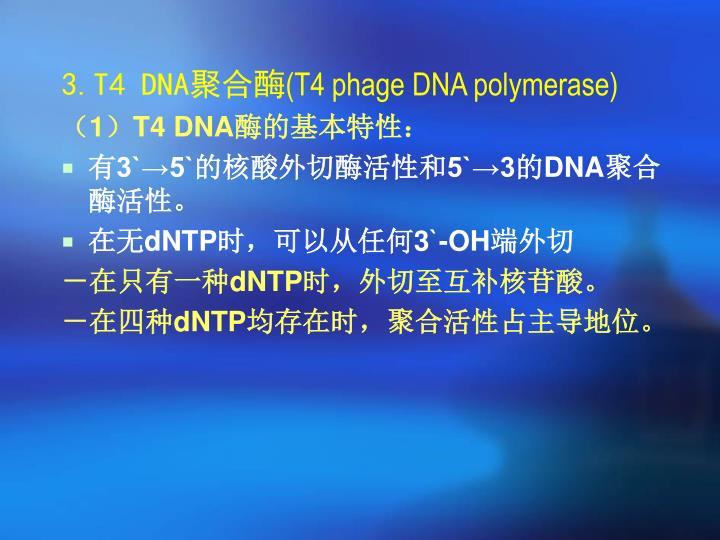 3.T4 DNA