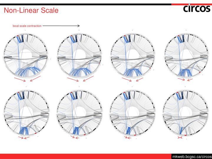 Non-Linear Scale