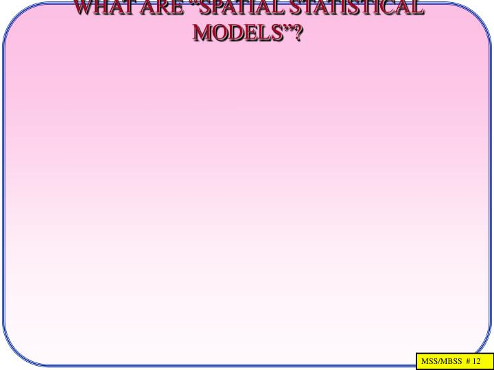 "WHAT ARE ""SPATIAL STATISTICAL MODELS""?"