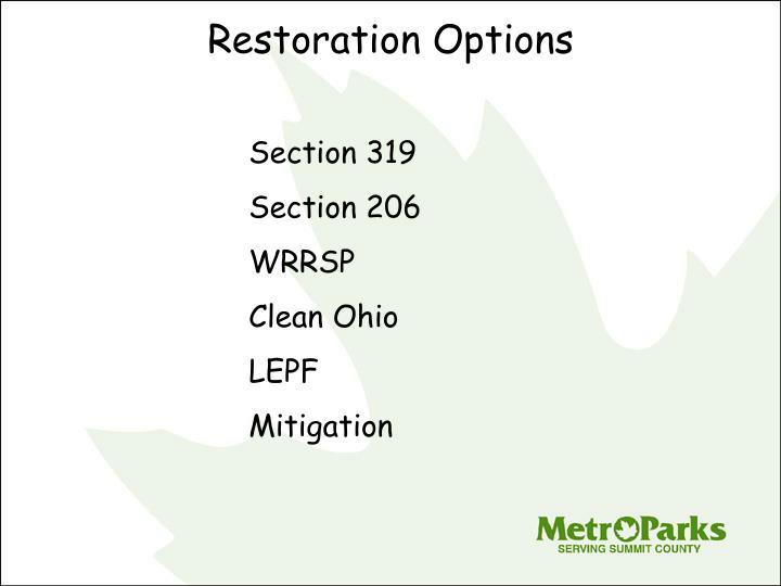 Restoration Options