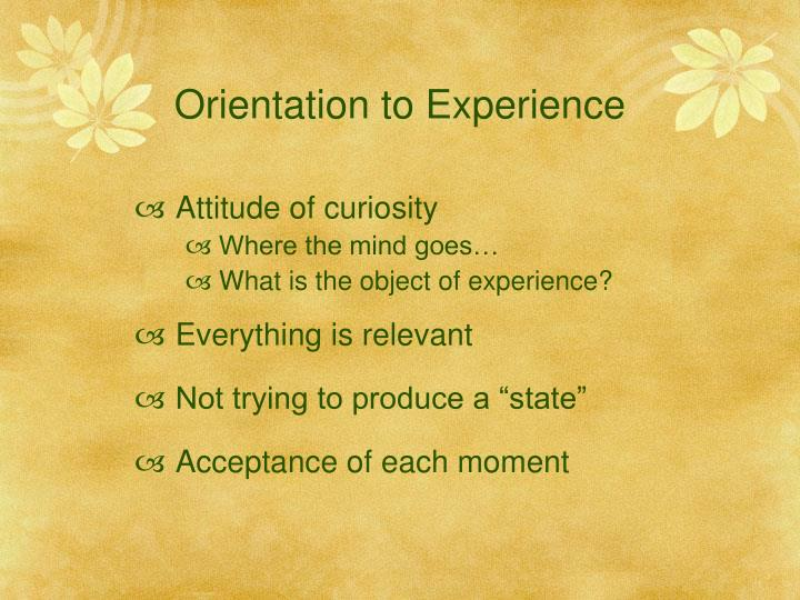 Orientation to Experience