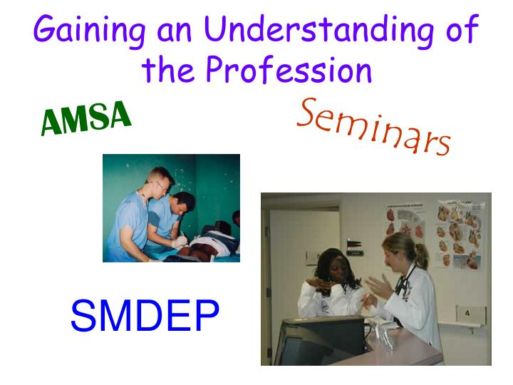 Gaining an Understanding of the Profession