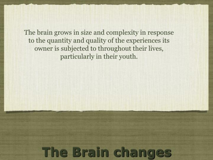 The brain grows in size and complexity in response to the quantity and quality of the experiences its owner is subjected to throughout their lives, particularly in their youth.