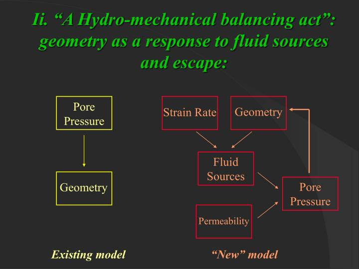 "Ii. ""A Hydro-mechanical balancing act"": geometry as a response to fluid sources and escape:"