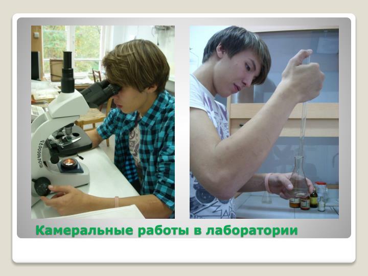 Камеральные работы в лаборатории