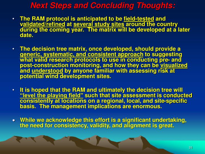 Next Steps and Concluding Thoughts: