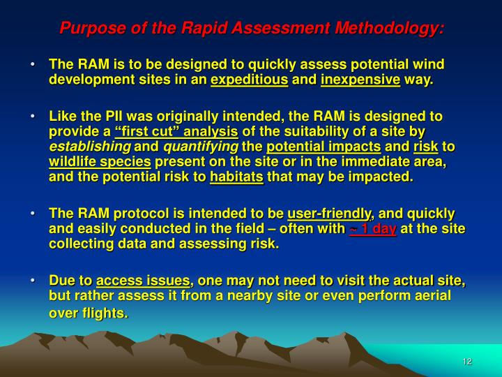 Purpose of the Rapid Assessment Methodology: