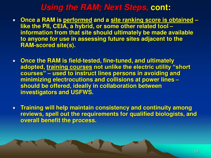 Using the RAM; Next Steps,