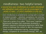 mindfulness two helpful lenses1