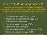 other mindfulness approaches