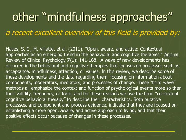 "other ""mindfulness approaches"""