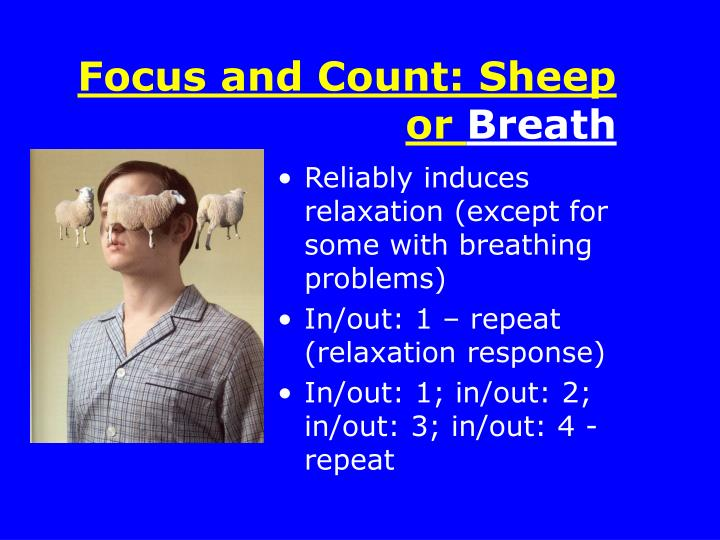 Focus and Count: Sheep or