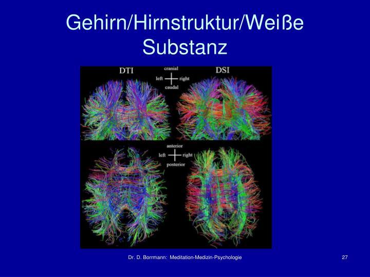 Gehirn/Hirnstruktur/Weiße Substanz