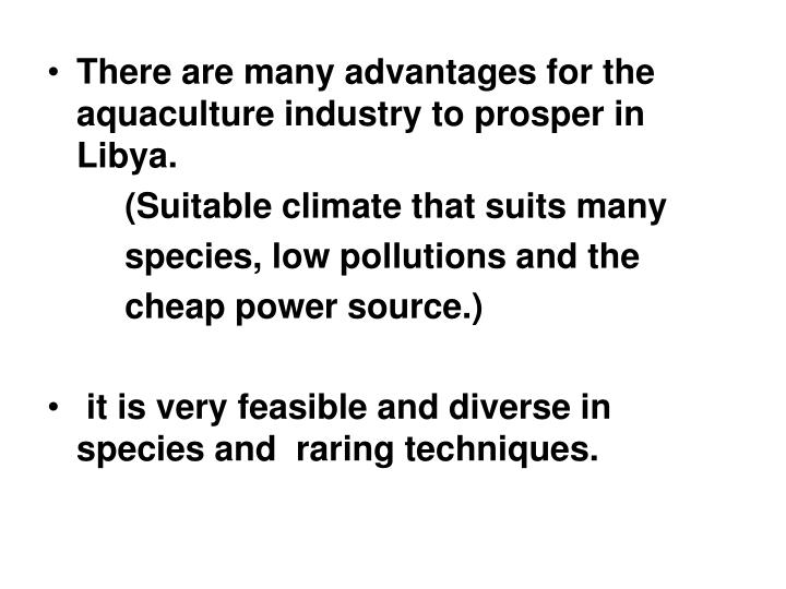 There are many advantages for the aquaculture industry to prosper in Libya.