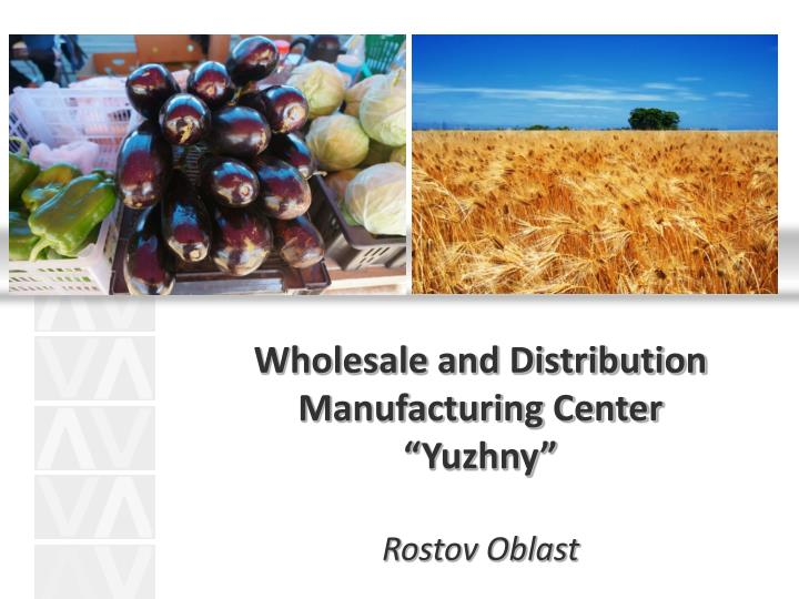 Wholesale and Distribution Manufacturing Center